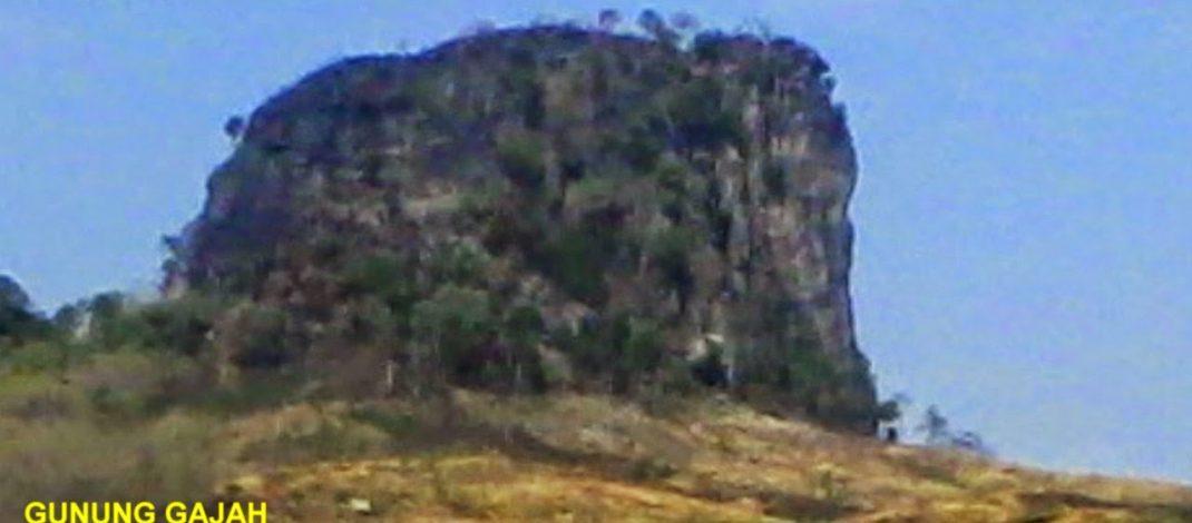 Meningkatnya Wisatawan Gunung Gajah